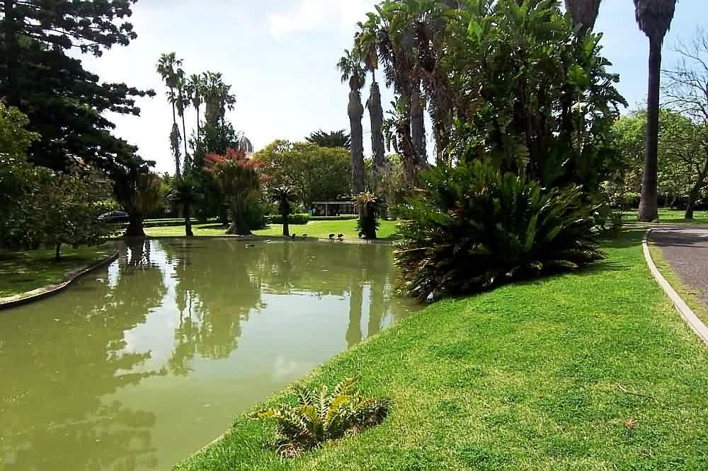 Fotos de Jardim Tropical – São Paulo – Serviço Doméstico