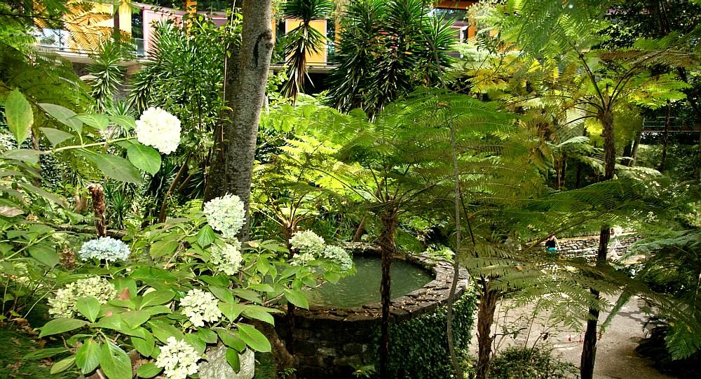 Imagens da Madeira  Funchal  Jardim Tropical Monte Palace